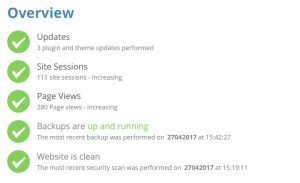 Image of Website Care Report Overview