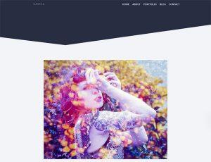 Screenshot of Luna DL homepage
