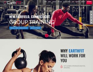 Screenshot from the EarthFIT website